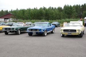 Mustang treff 008